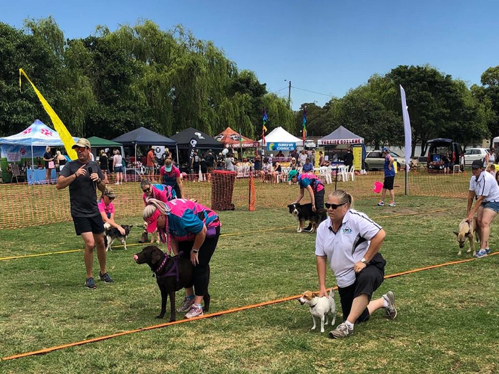 Image for Dogs in the Park Hawkesbury