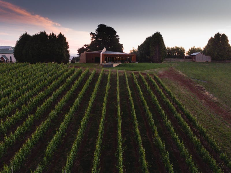 Clover Hill Wines