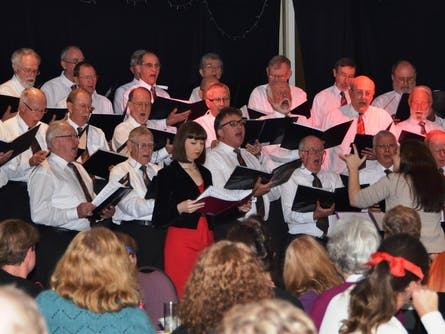 Cantorion Male Voice Choir Concert