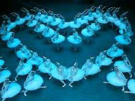 The Shanghai Ballet
