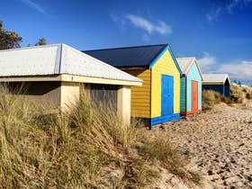Colourful Frankston beach boxes showcase one of the area's hidden gems.