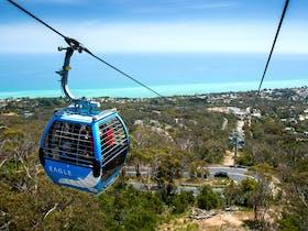 Arthurs Seat Eagle Gondolas 'soaring'