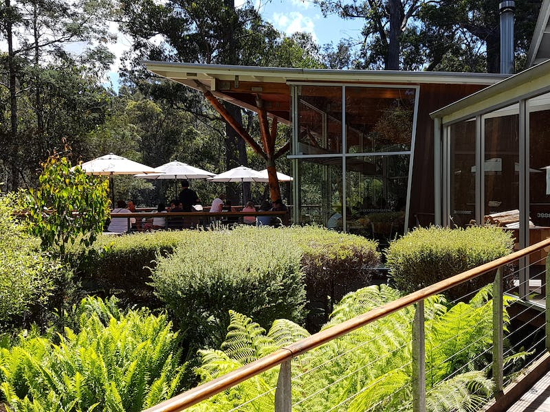 Tahune Adventures - Visitor Centre and Cafe