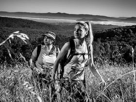 Oxfam Trailwalker Sydney: 101 Night