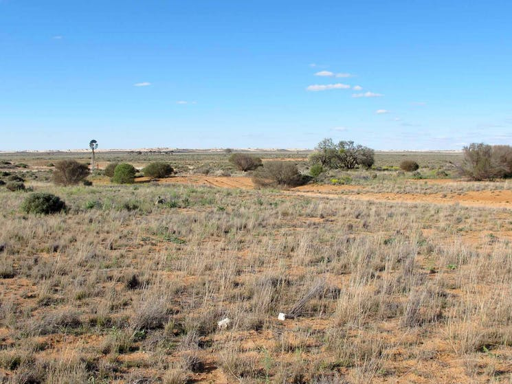 Self-guided Drive tour, Mungo National Park. Photo: Wendy Hills/NSW Government