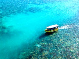 Airlie Beach Glass Bottom Boat Tour, The Whitsundays, Queensland