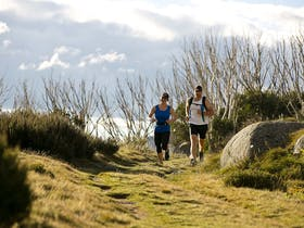 7 Peaks Run - Falls Creek