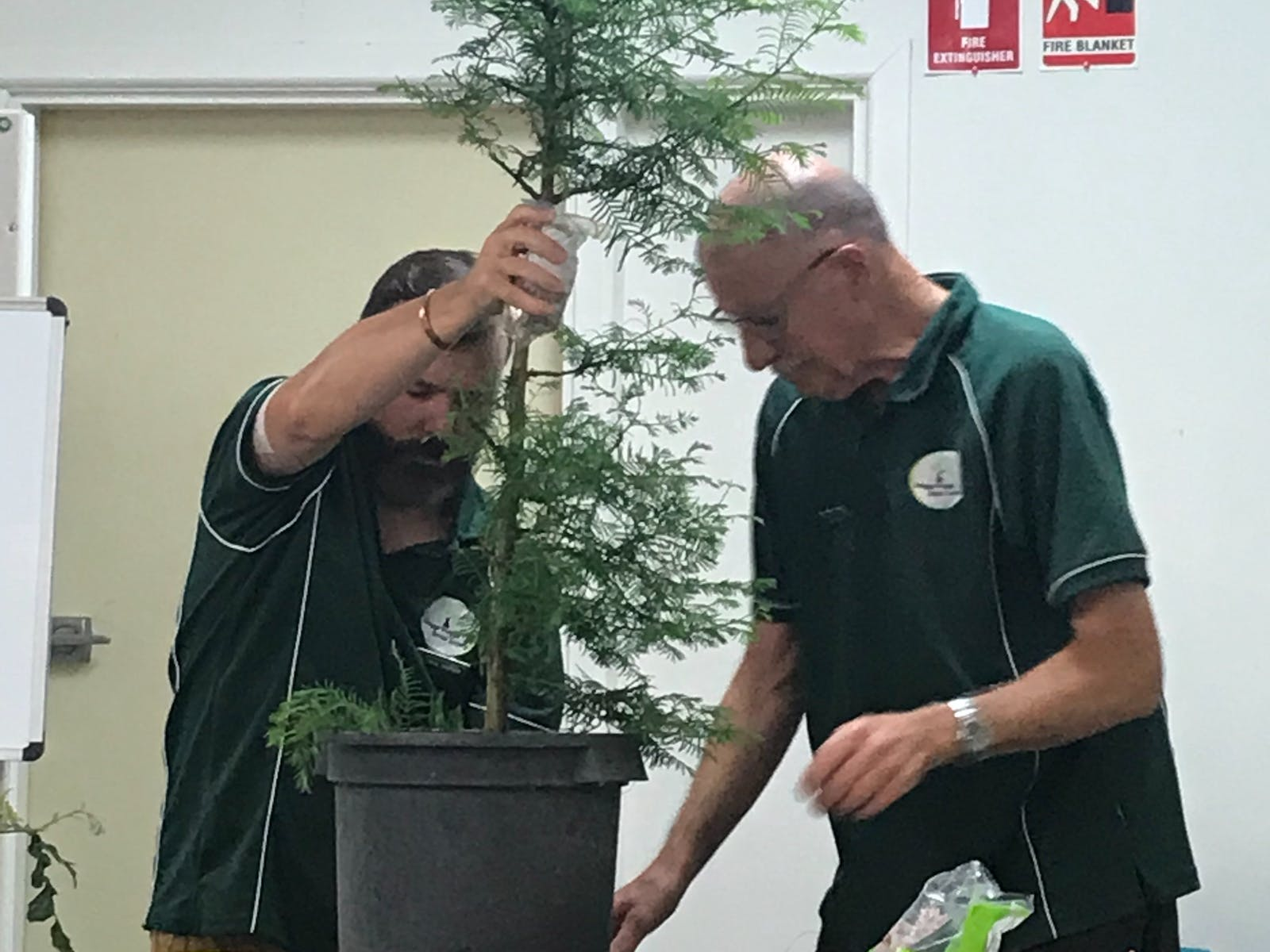 Image for Monthly Meeting for the Wagga Wagga Bonsai Society Inc.