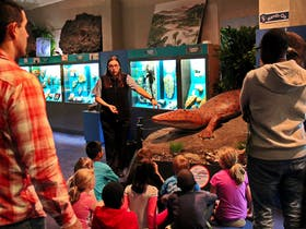 National Dinosaur Museum Public Tours