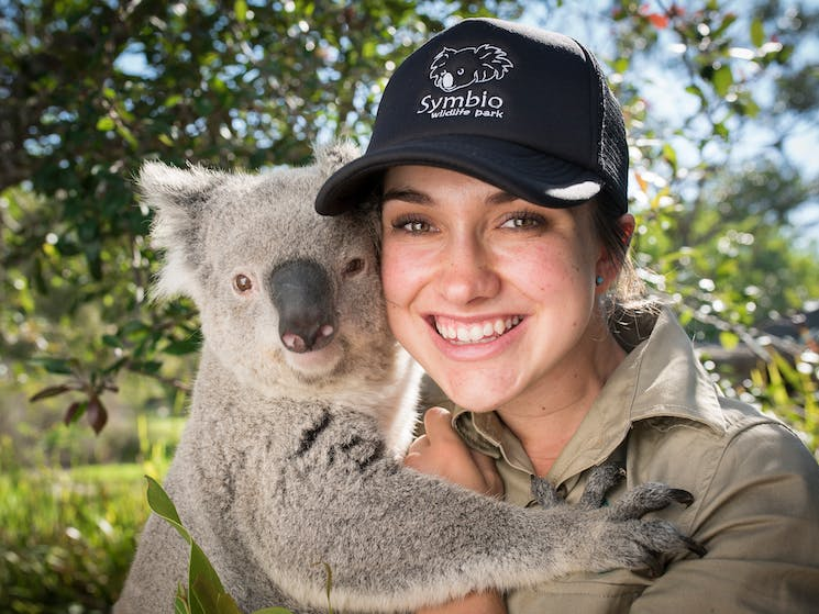 Symbio is the perfect place to cuddle up to koala for a photo opportunity