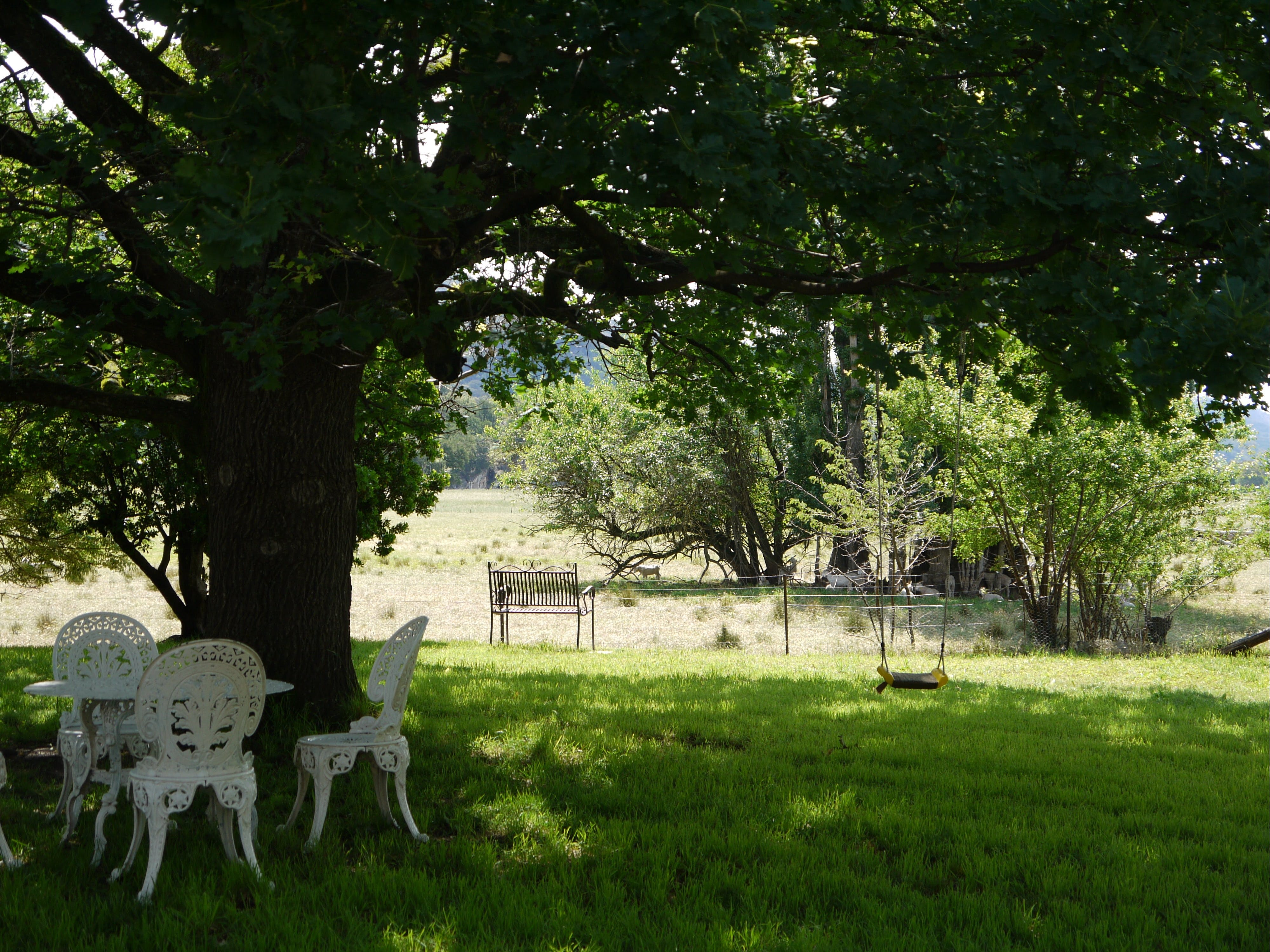 Image for Coodravale Homestead