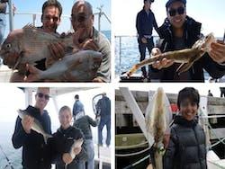 Port Phillip fish samples 1
