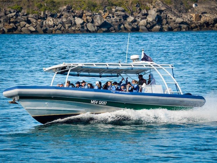 Byron Bay boat tours