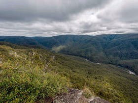 Tommys Rock Lookout and Walking Track