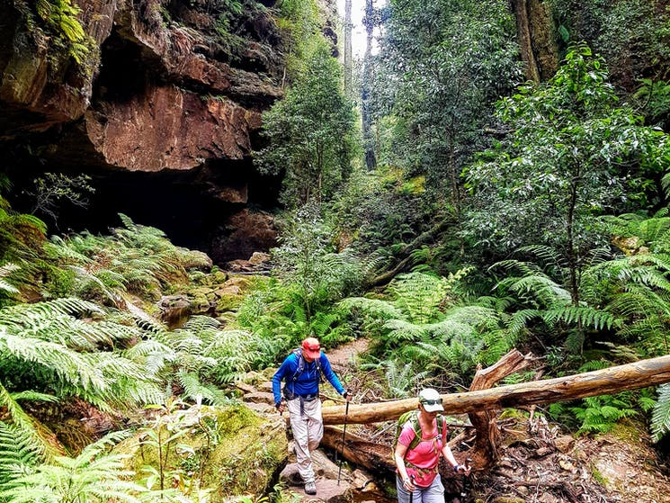Six Foot Track 3-Day Guided Pack-Free Walk with Life's An Adventure