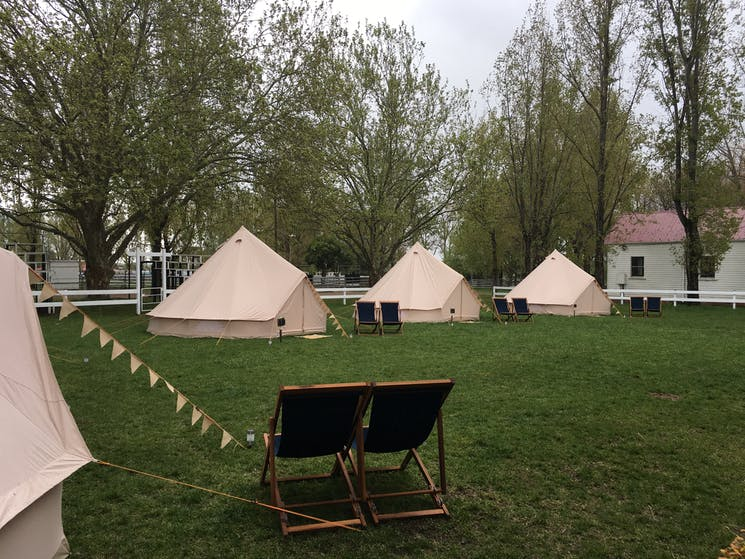 A glamping village