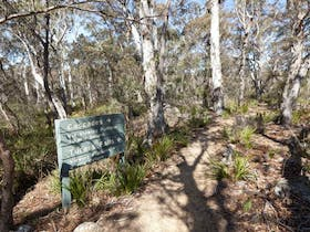 Cascades walking track and viewing platform