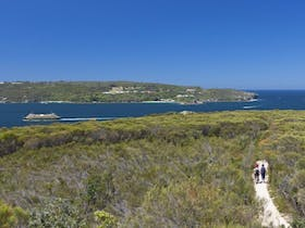 Manly to Spit Bridge Scenic Walkway