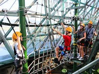 mid zoom high ropes course at Cairns ZOOM & Wildlife Dome