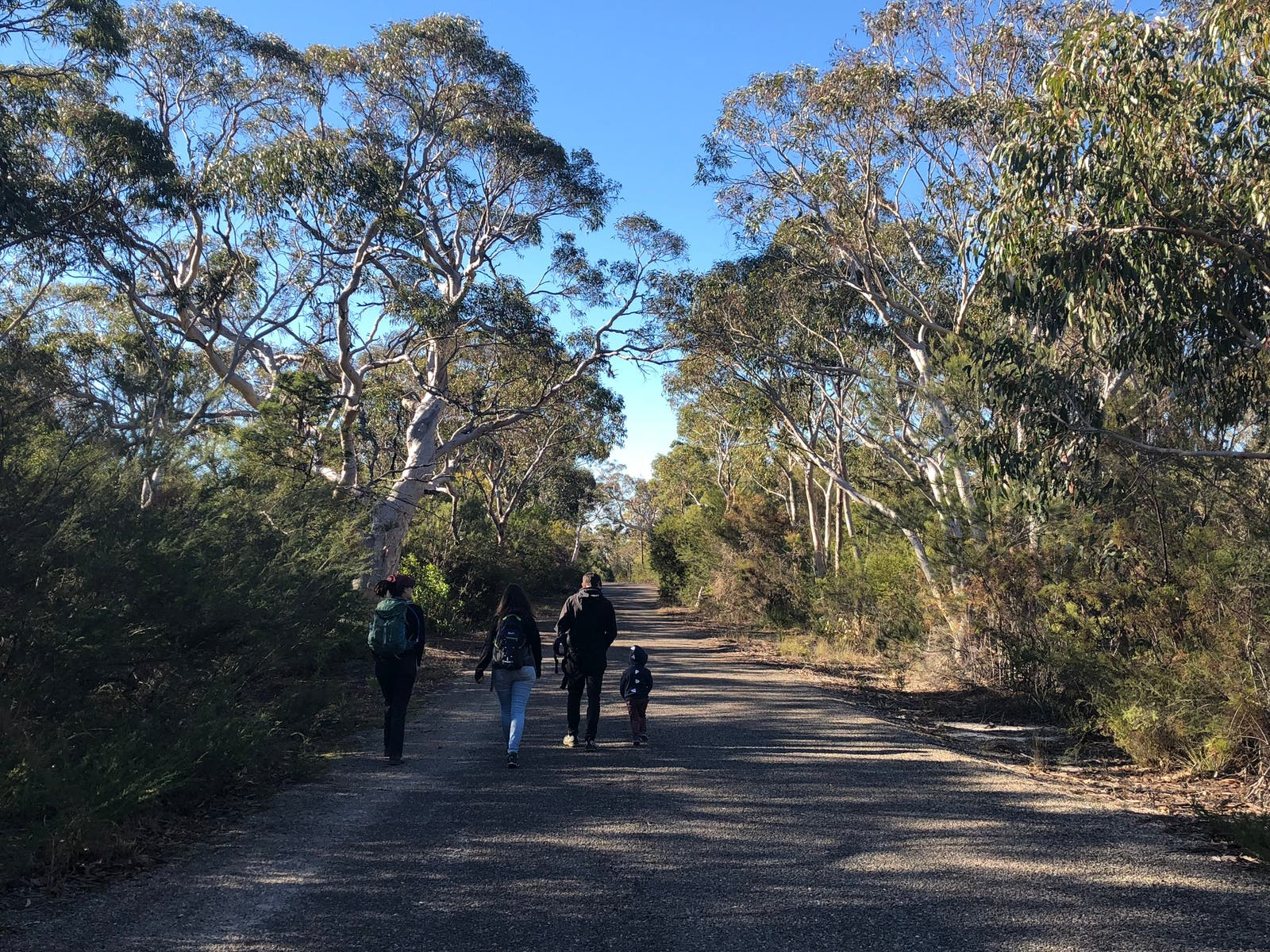 Image for Guided Indigenous Walks in Dharawal National Park - O'Hare's Lookout Trail