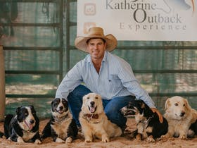 Tom Curtain and his Working Dogs pictured at the Katherine Outback Experience