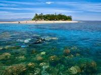 Snorkelling Low Isles