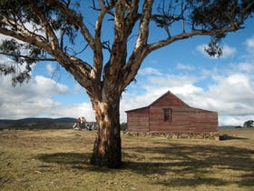 Westermans Hut, Namadgi National Park