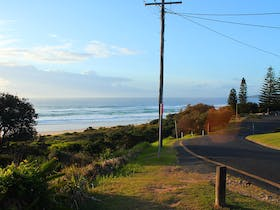 Roadside Scenery. Pippi Beach, Yamba.