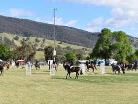 Omeo and District Show Cover Image