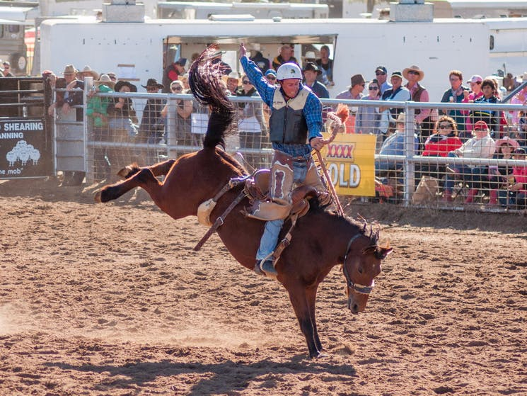 Coonamble Rodeo and Campdraft