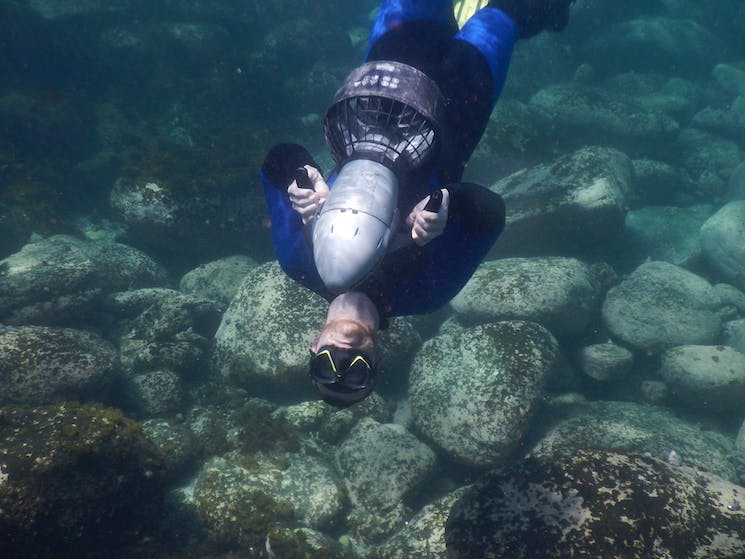 Fun underwater tours for everyone