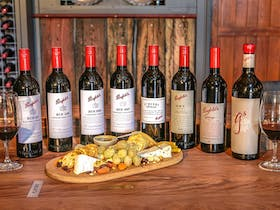 Only place outside of SA with the largest selection of Penfolds Wines available for tasting !