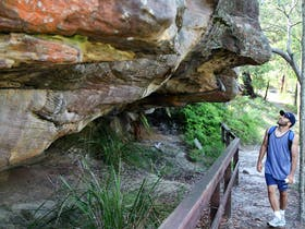 Red Hands Cave Walking Track - Ku-ring-gai Chase National Park