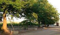 Image: Eunonyhareenyha Winery