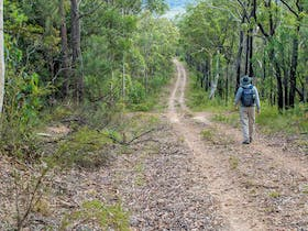 Kangaroo River Walking Track