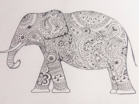 Paisley Elephants - Adult Drawing Class with Wine