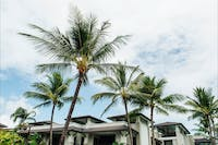 Located in tropical paradise - Port Douglas