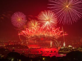 Sydney New Year's Eve Cruise with Tribal Warrior