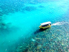 Learn about the diverse ecosystem that makes up the great barrier reef in Airlie Beach