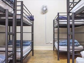 Shared Dorm Accommodation