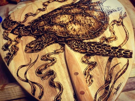 The Wood Shed - Pyrography with James Robinson. Presented as part of Surf's Up @ The Pav