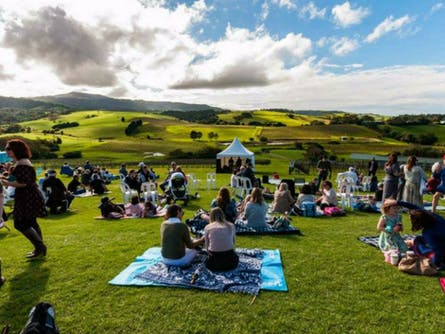 South Coast Wine Tour to Crooked River Wine's 'A Day on the Hill Spring Music Festival'