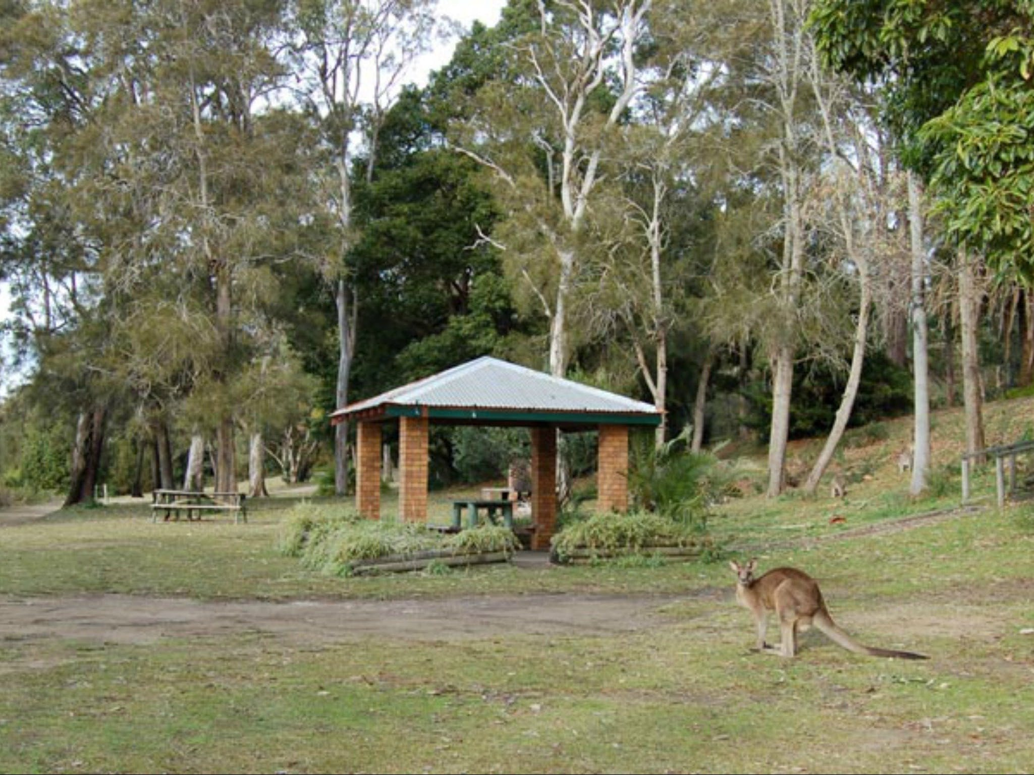 Sumber gambar: http://www.visitnsw.com/destinations/north-coast/lake-macquarie-area/morriset/attractions/morisset-picnic-area