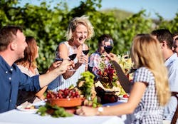 Enjoy a picnic whilst on a private wine tour