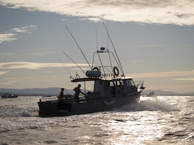Photo of Montague Island Game and Sport Fishing Charters