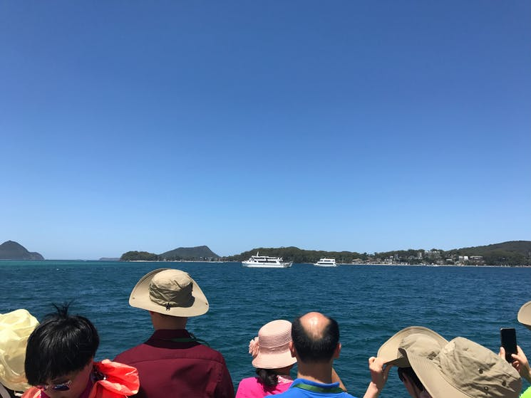 Dolphin Watching Port Stephens aboard Moonshadow V