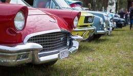 Image of the event 'Broke Village Fair and Vintage Car Display'