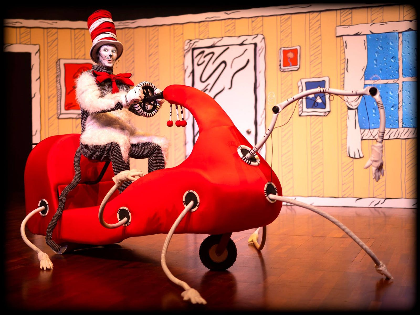Image for Dr Seuss's Cat In The Hat Live On Stage