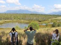 Eubenangee wetlands tour with wooroonooran safaris