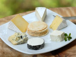 Wine and Cheese Tour